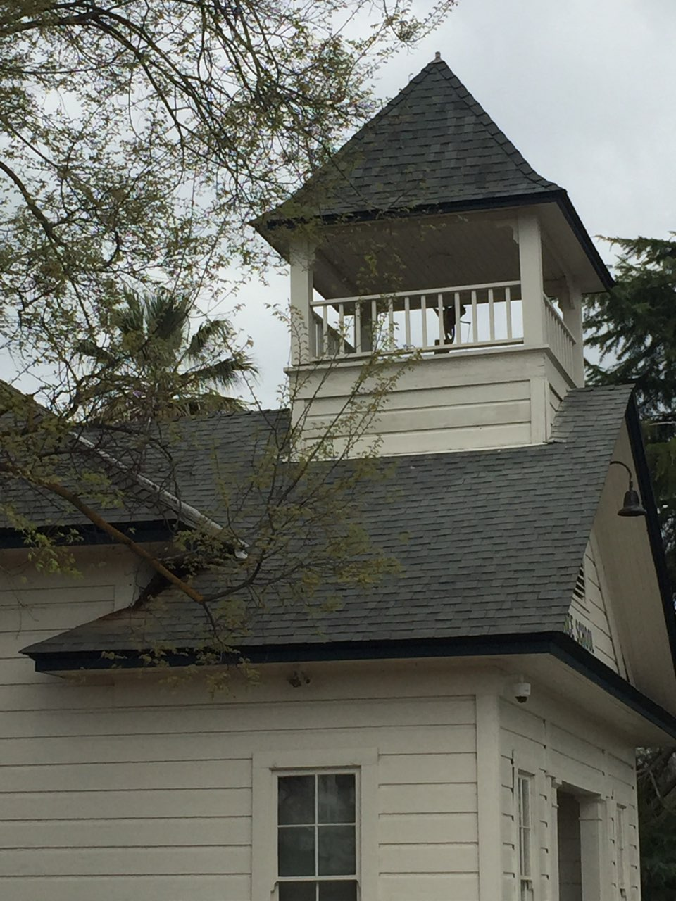 The bell on top of the Willow School. Photo: Steve Newvine