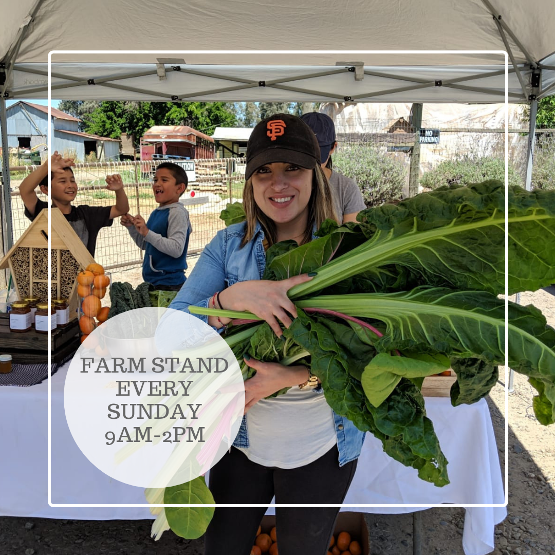 FARM STANDEVERY SUNDAY 8AM-2PM (1).png