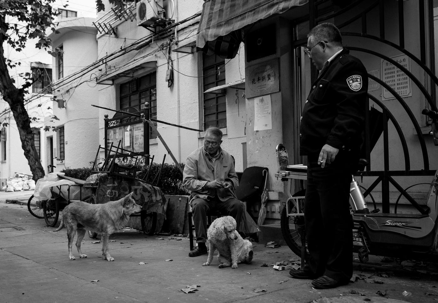 philipp schäbler shanghai china-2420.jpg