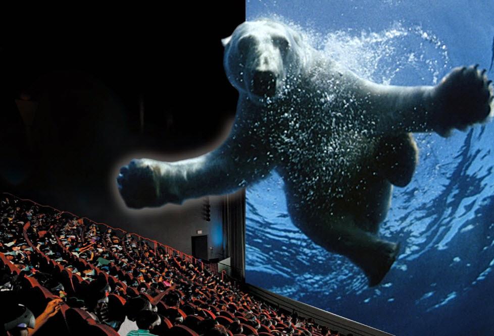 Bear-IMAX.jpg