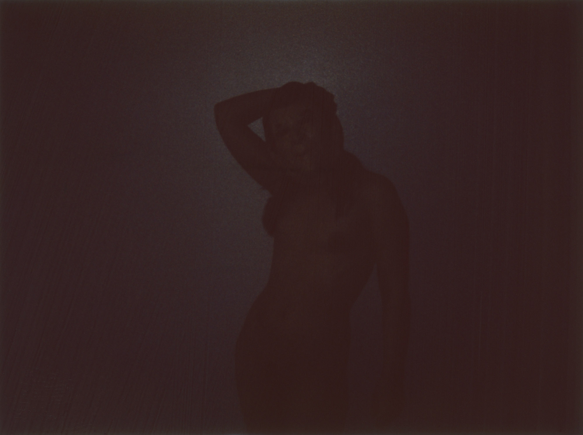 Nude Reagan by John Brian King (8)