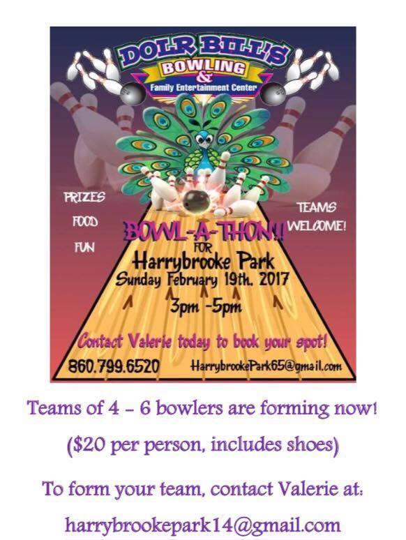 Harrybrooke Park Fundraiser 2017.jpg