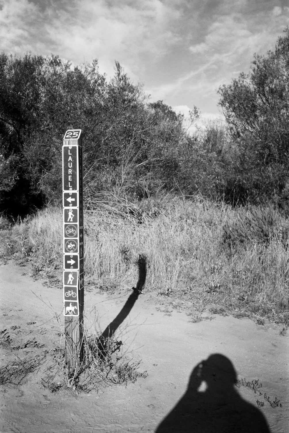 A trail marker along the way.