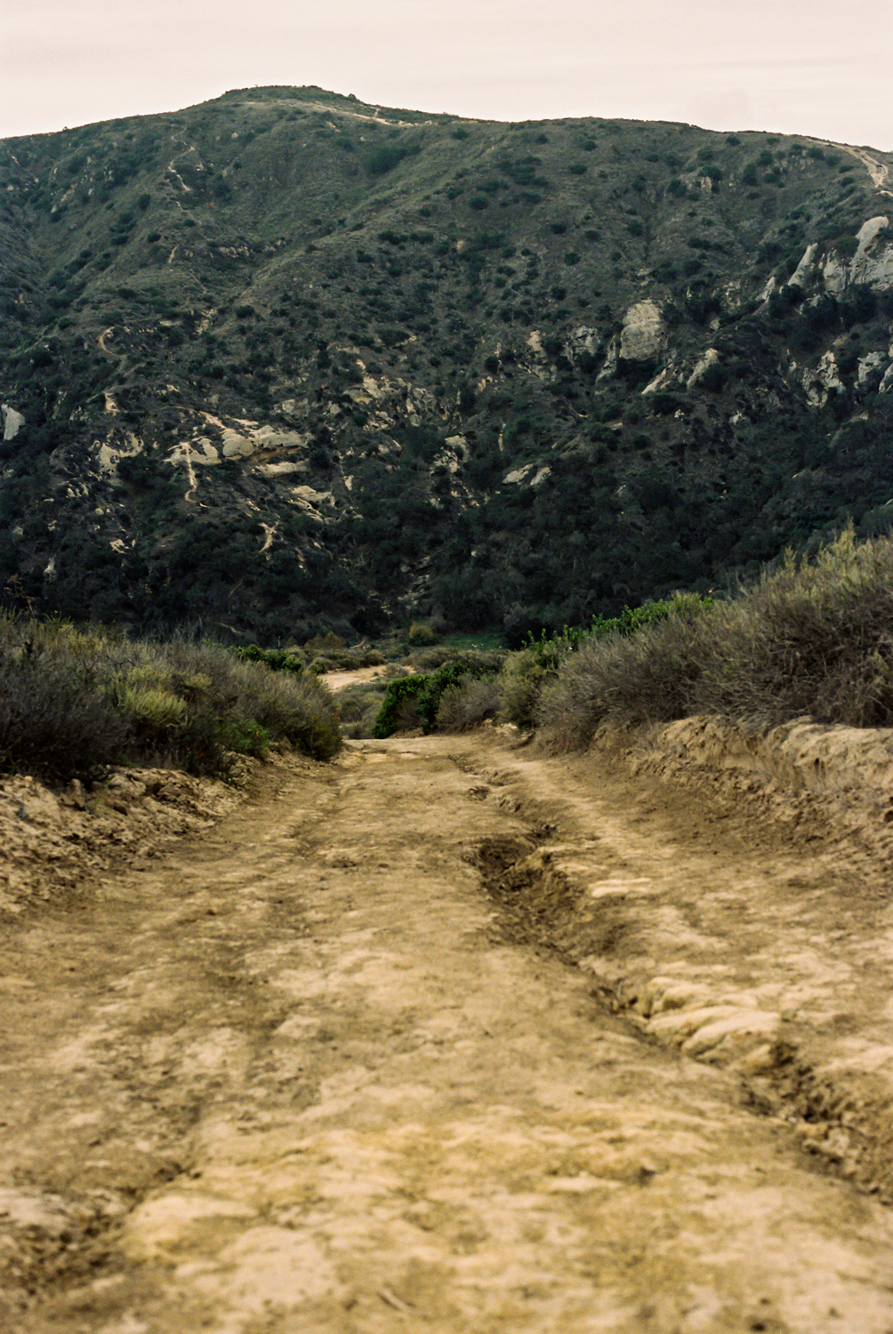 The bumpy fire road of Big Bend Trail.