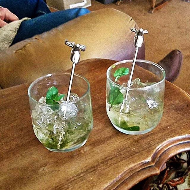 You know you've got an awesome mom when she's your biggest fan! This mom proves it by sending pics of Mint Juleps she made with your stirrers. Happy Mother's Day @gaylewebb_2000 - love you! 👩❤️ #mothersday #originalhipstirrer #playwithyourcocktail #doe #deer #mintjulep #bestmom #awesomemom 📷: @gaylewebb_2000