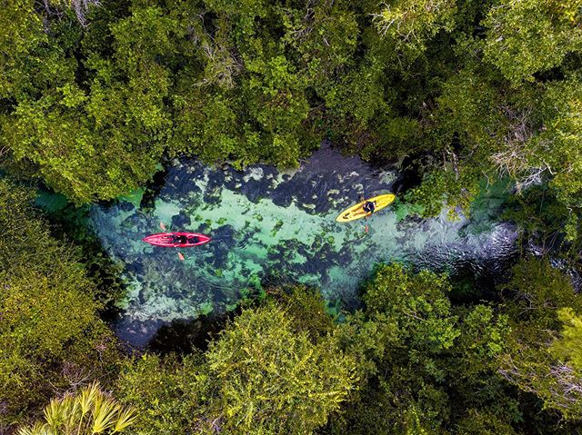 "Kayakers and manatees meander together down Weeki Wachee Springs, named by the Seminole Tribe to mean ""Winding River."""