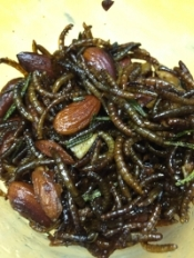 Mealworms & Almonds