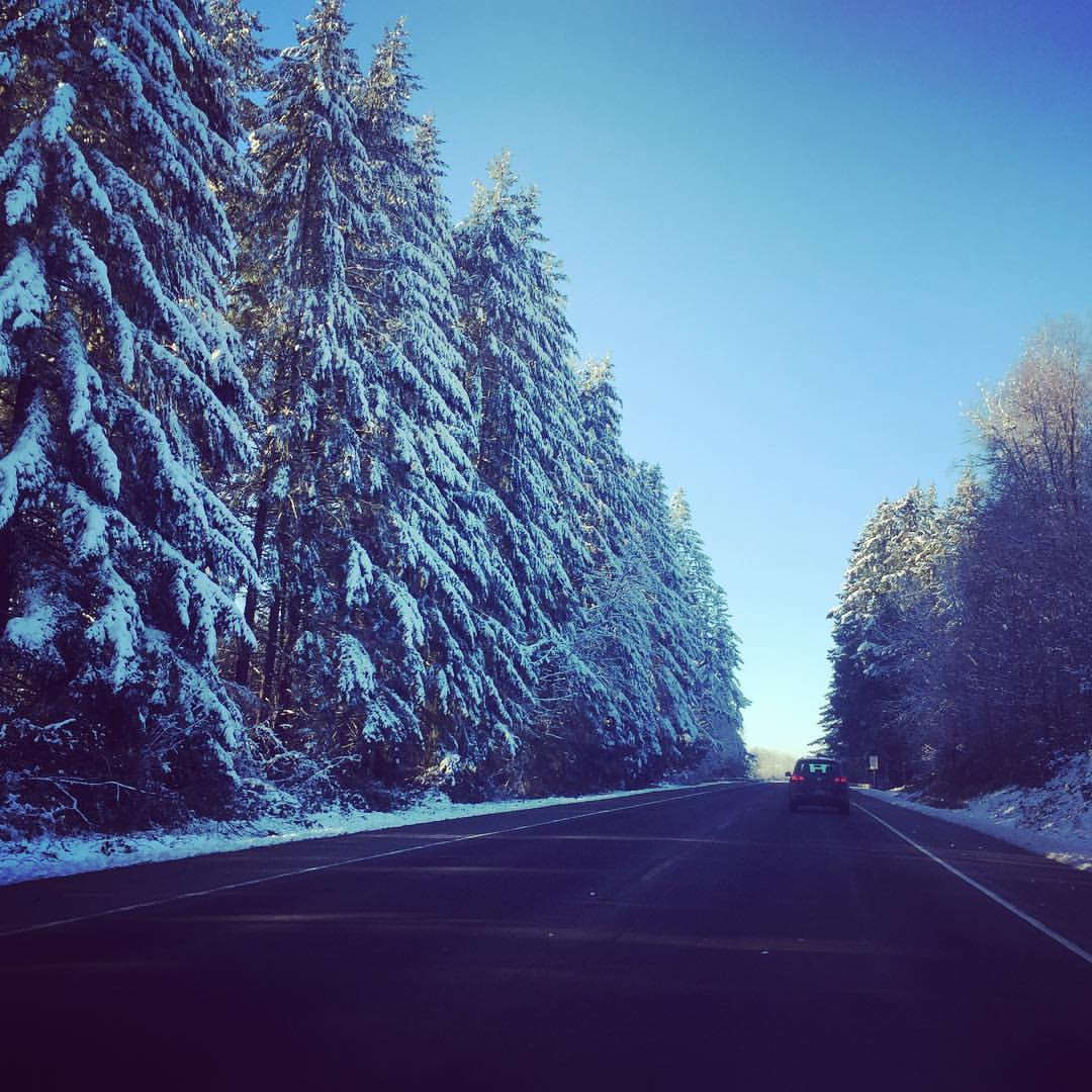 Snow Day Massage McMinnville OR Trees Road Sky Breathe Body & Spa