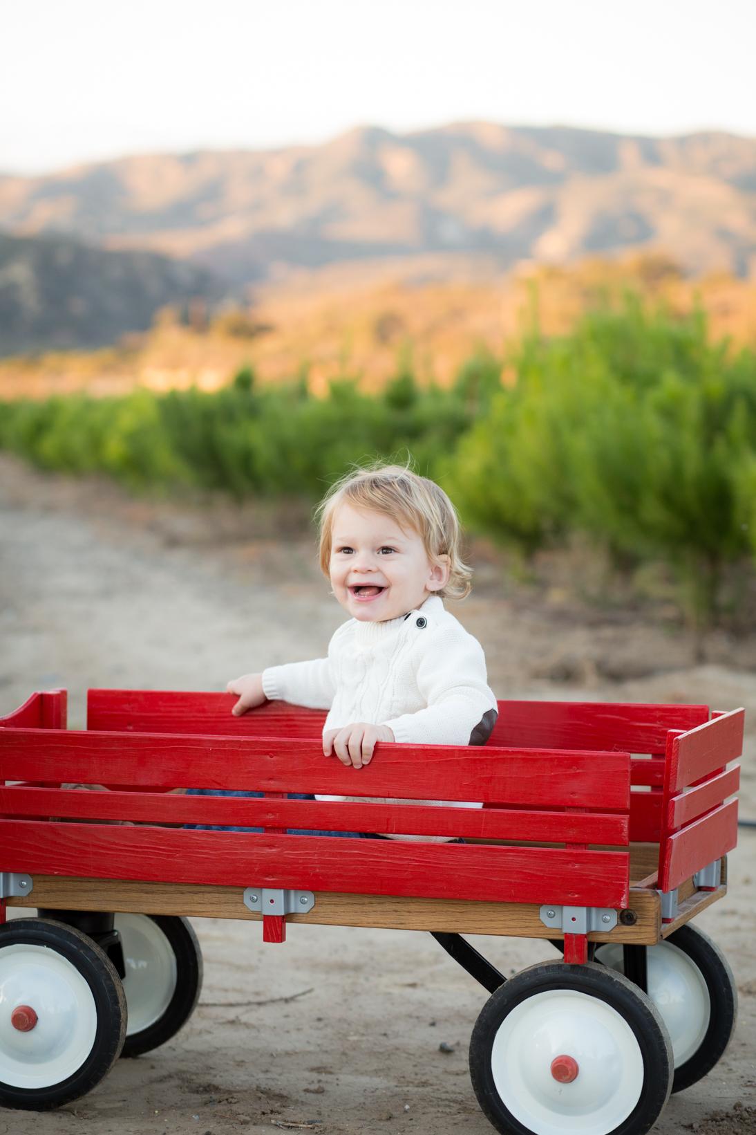 Beaubelle Photography Children WEB-6113.jpg