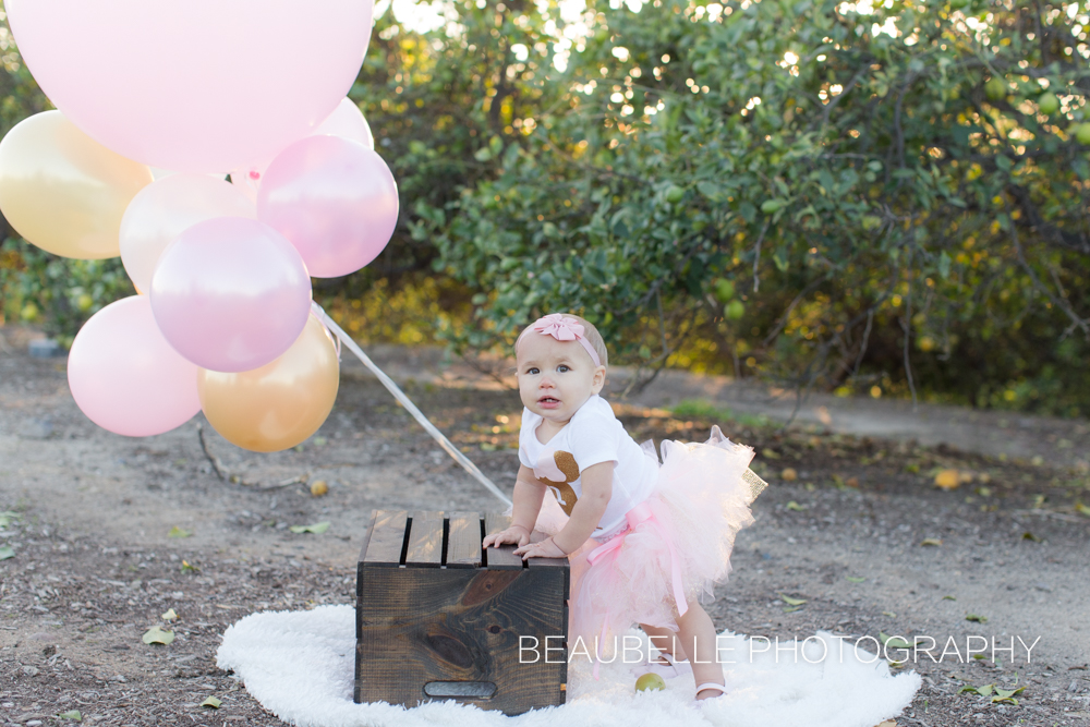 beaubelle photography