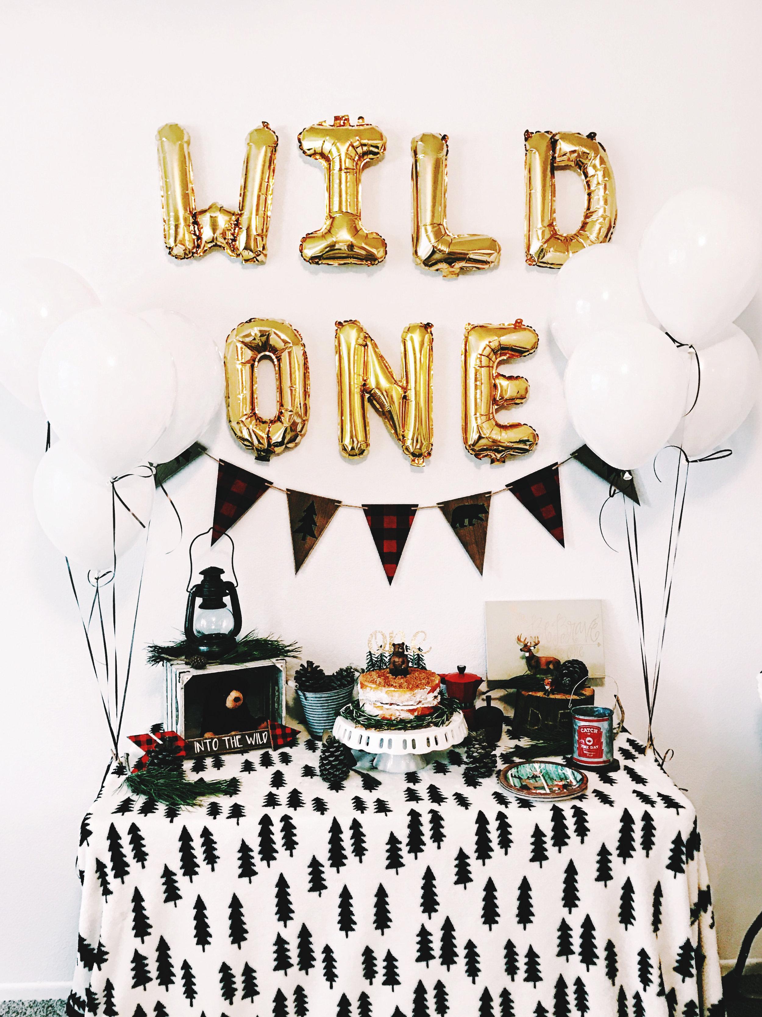 wild one 0012.jpg