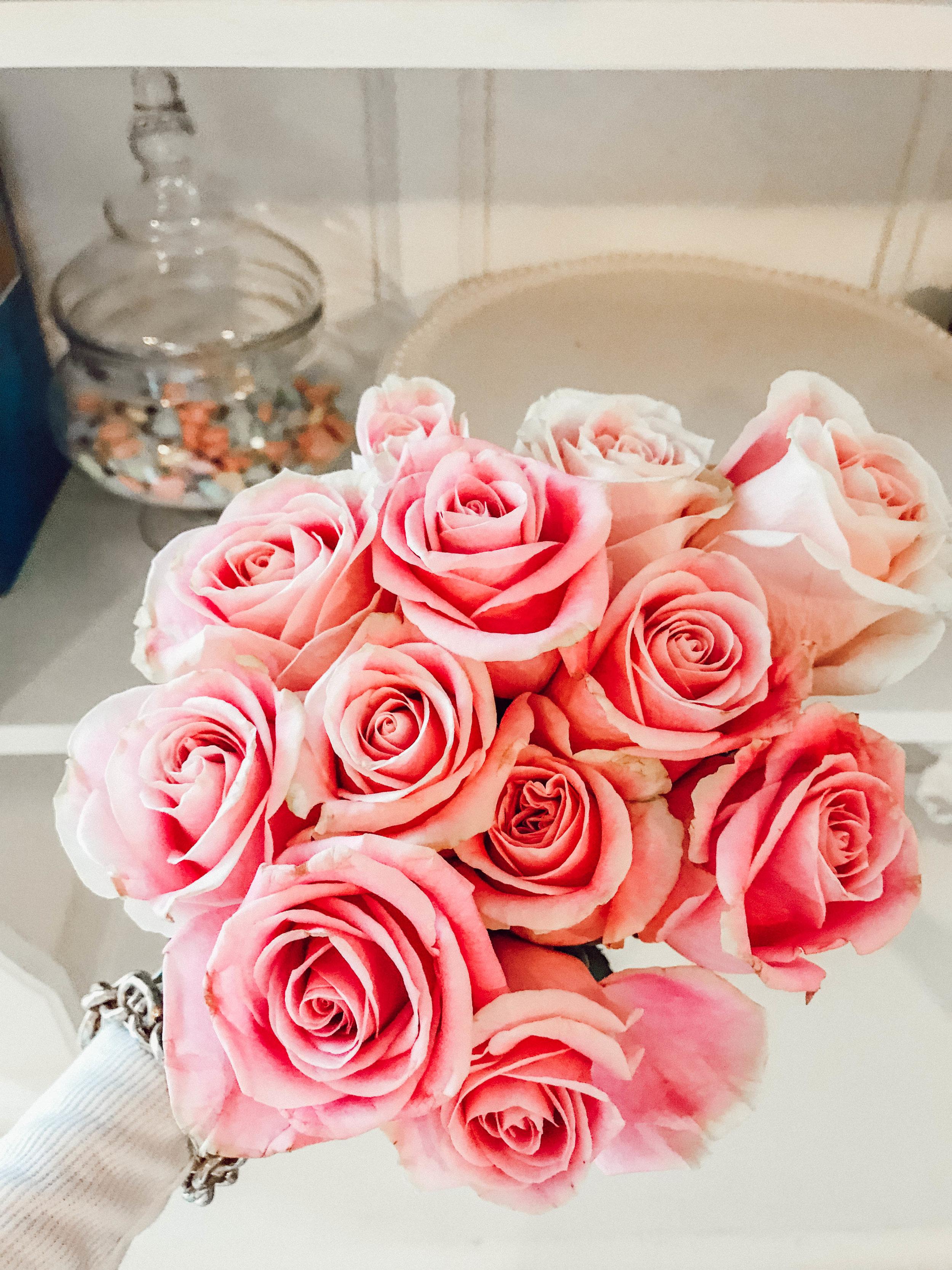 pink roses 001.jpg