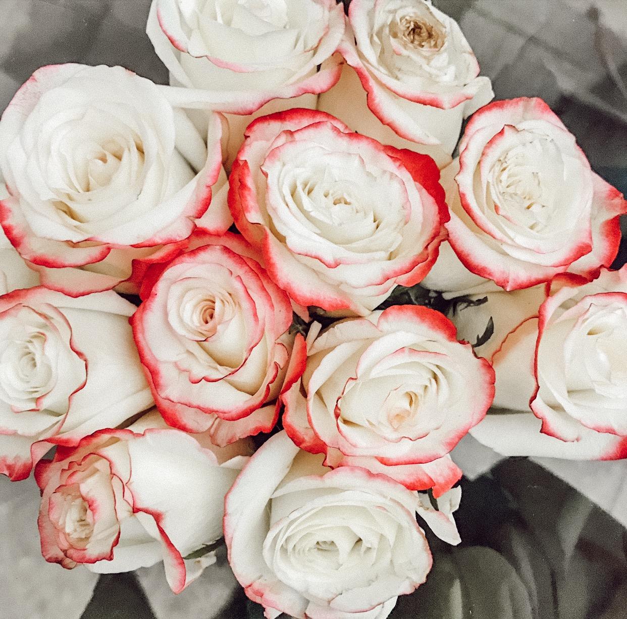 roses in nyc.JPG