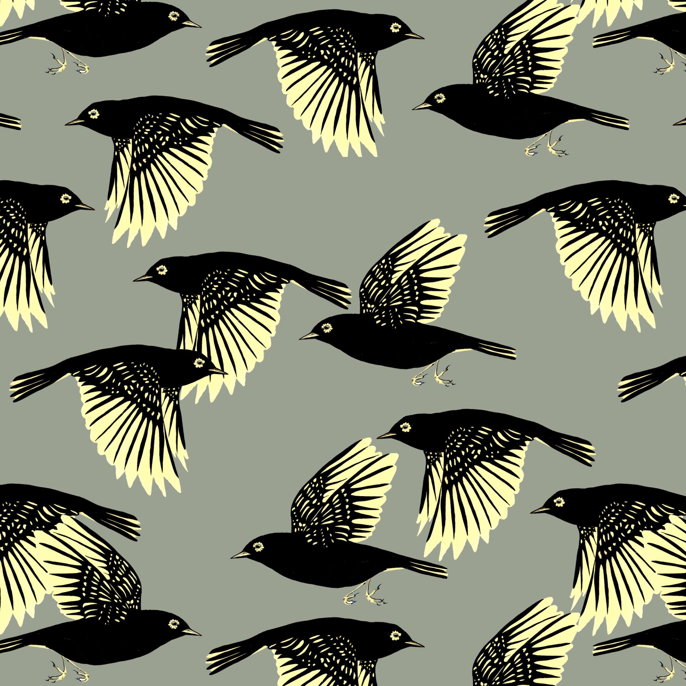 waxeyes pattern