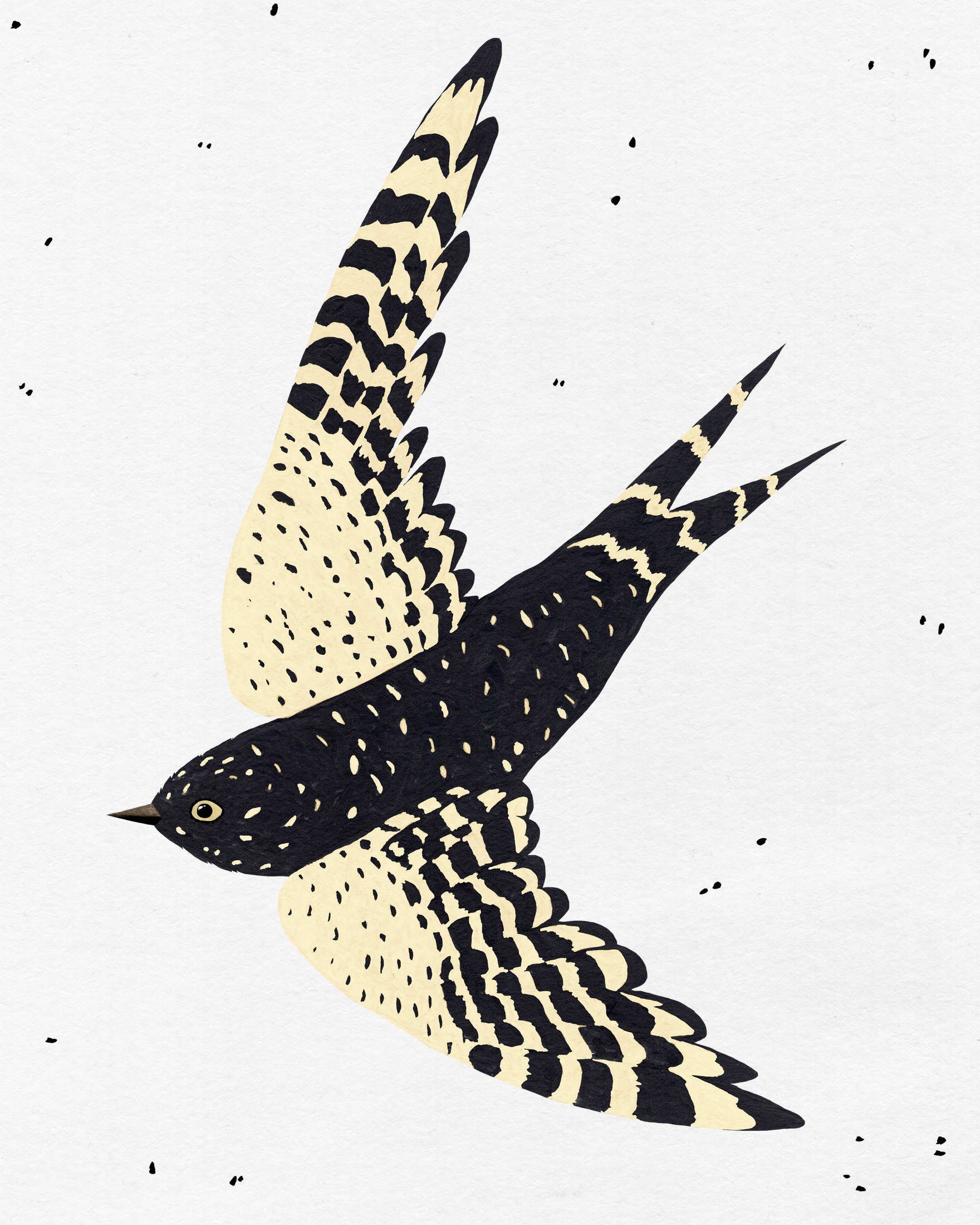 patterned bird series -flying swallow