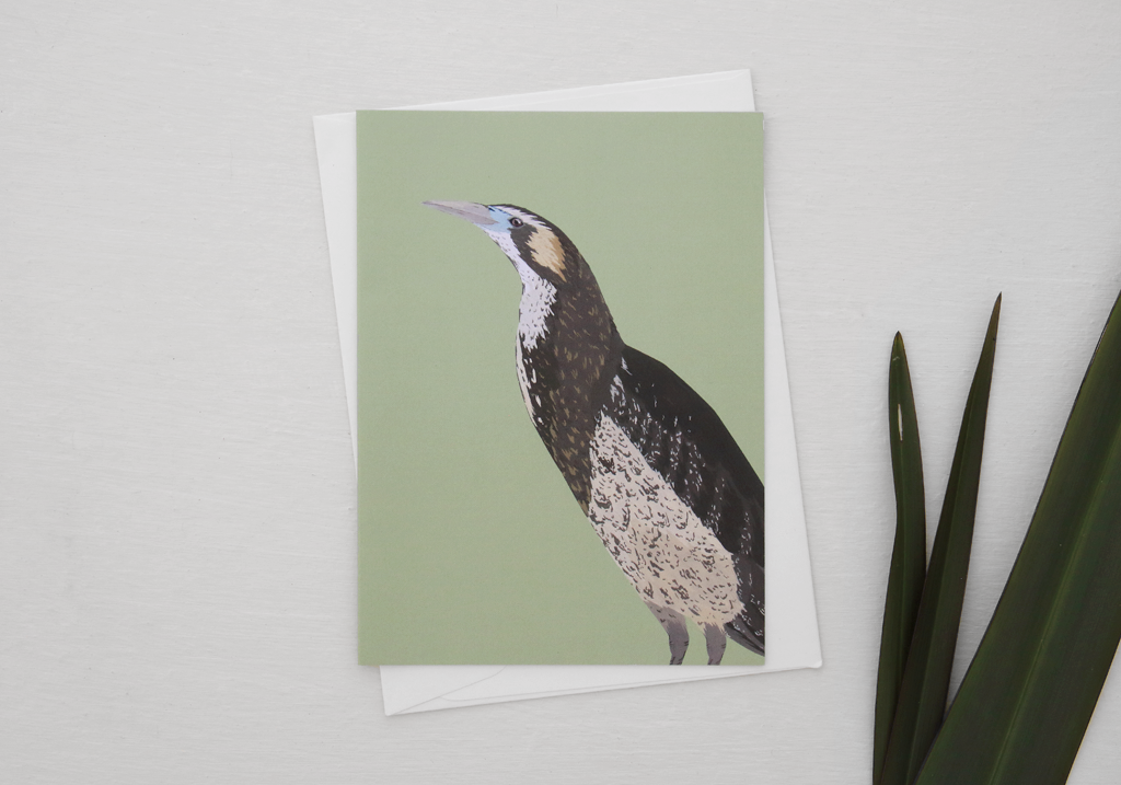 melissa-boardman-nz-bird-illustrated-greeting-card-bittern.png