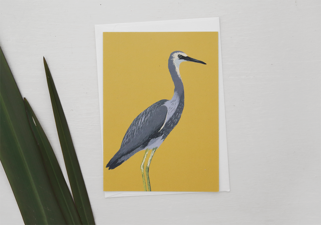 melissa-boardman-nz-bird-illustrated-greeting-card-white-faced-heron.png