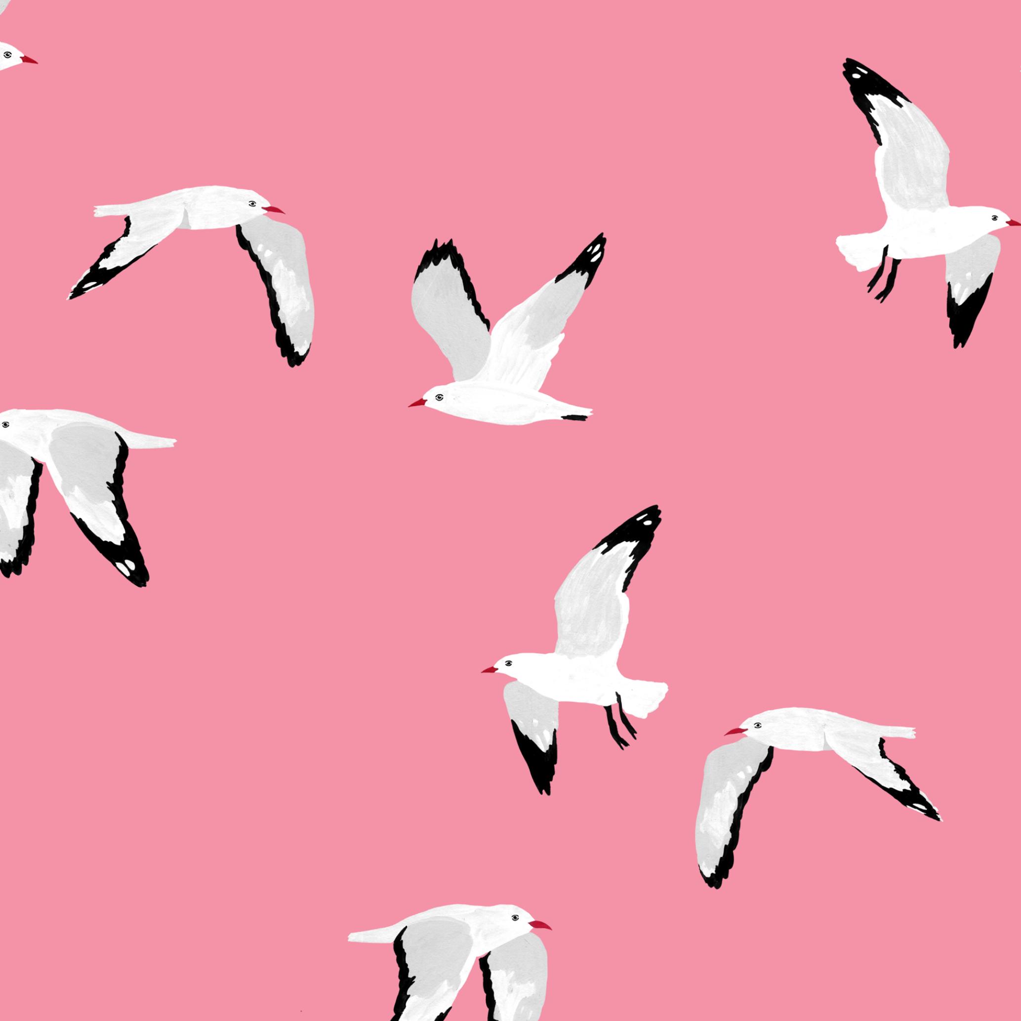 melissa boardman seagulls scatter pattern pink.png