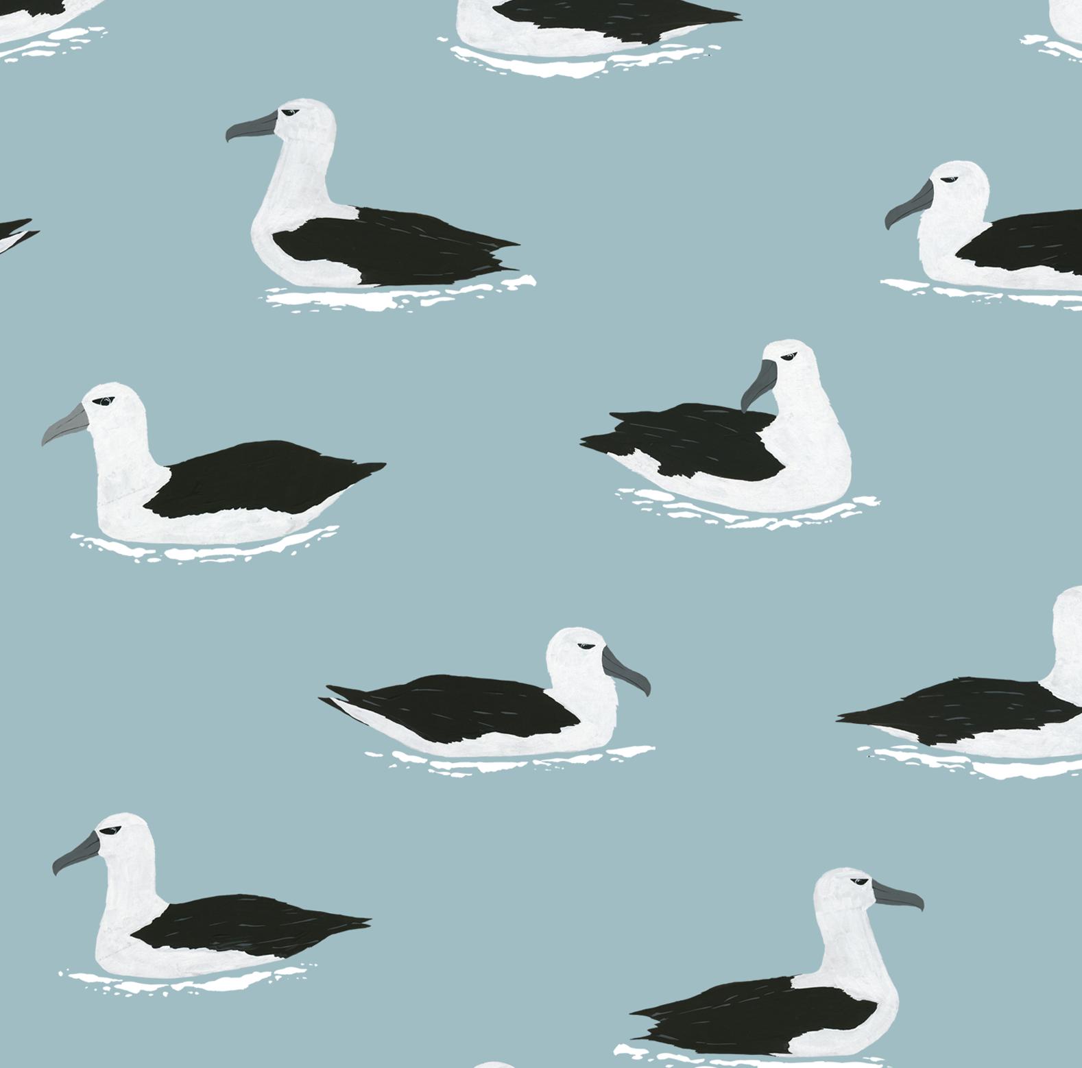 Melissa Boardman albatross pattern colour.png