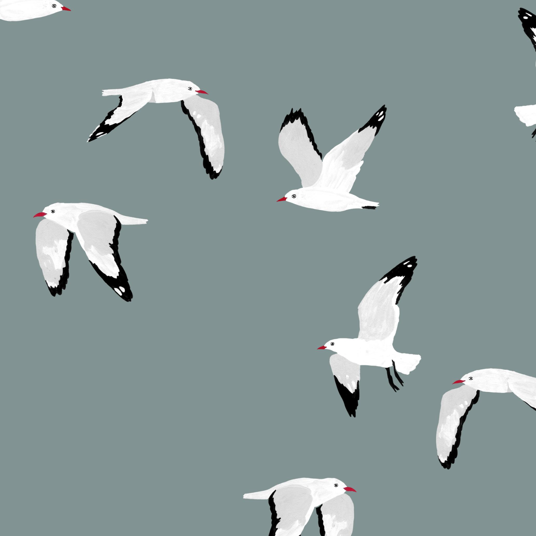 melissa boardman seagulls scatter pattern.png