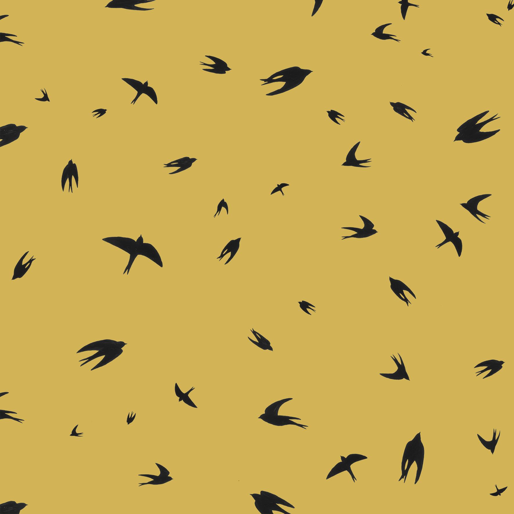 melissa boardman  flying swallows scatter.png