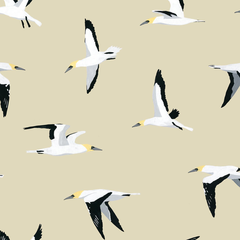 melissa boardman gannet pattern.png