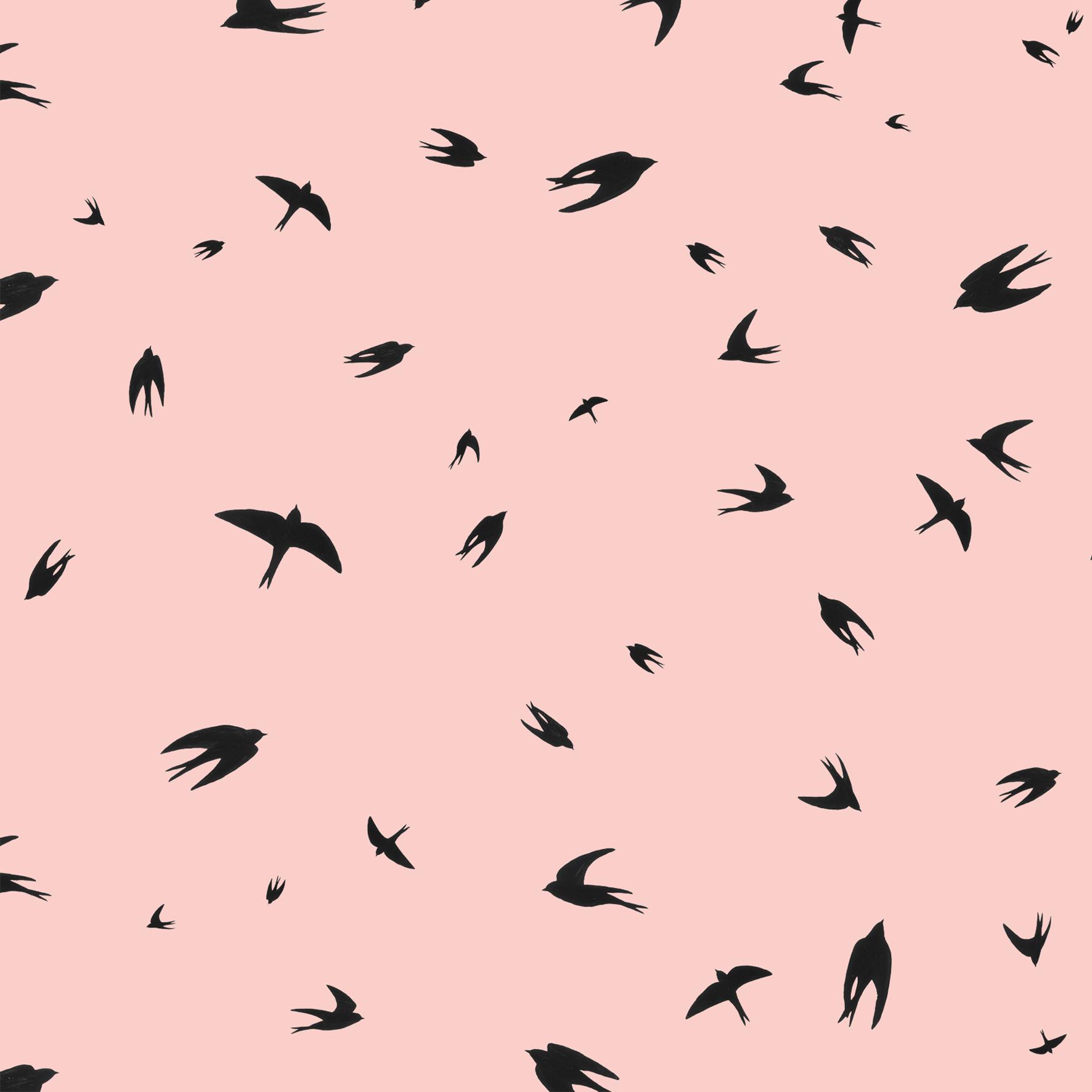 melissa boardman flying swallows pink.png