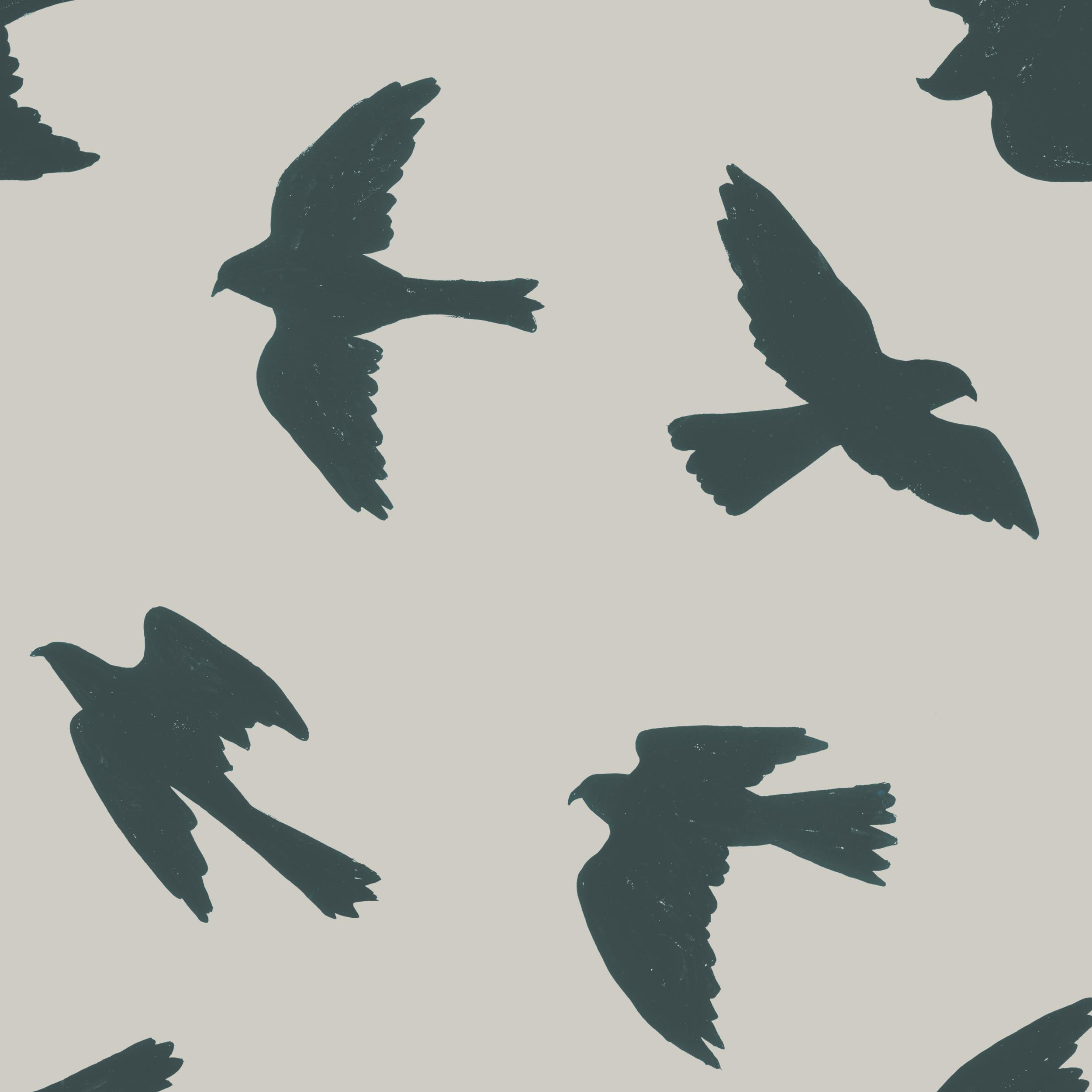 melissa boardman falcon silhouettes grey.png