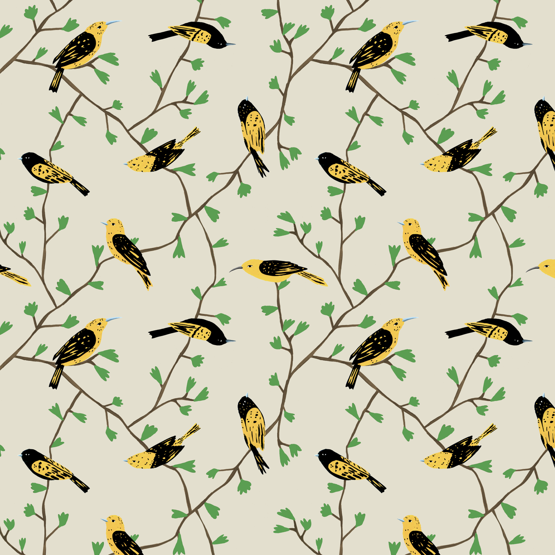melissa boardman  birds in vines pattern yellow.png