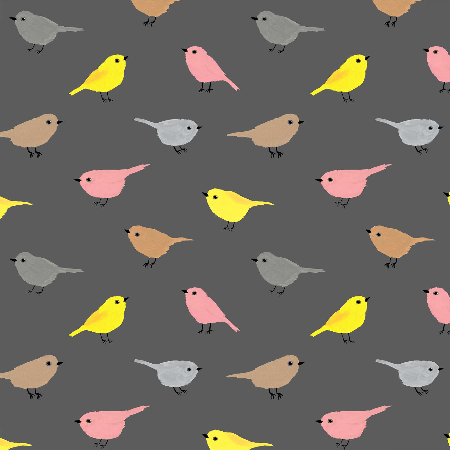 melissa boardman cute birds pattern on grey.png