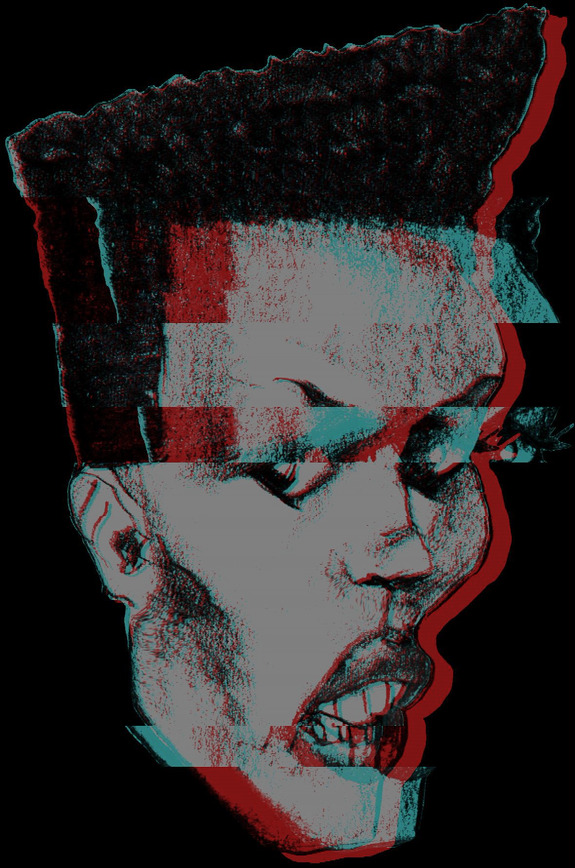 gracehead-glitch1.png