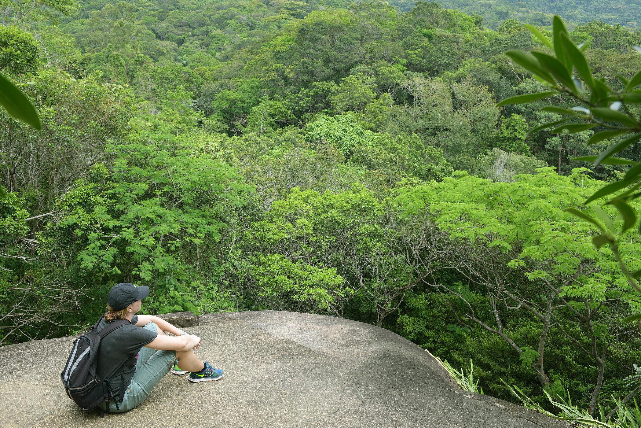 matkblogi, vaellus, metsä yksinmatkailu, luonto, brasilia