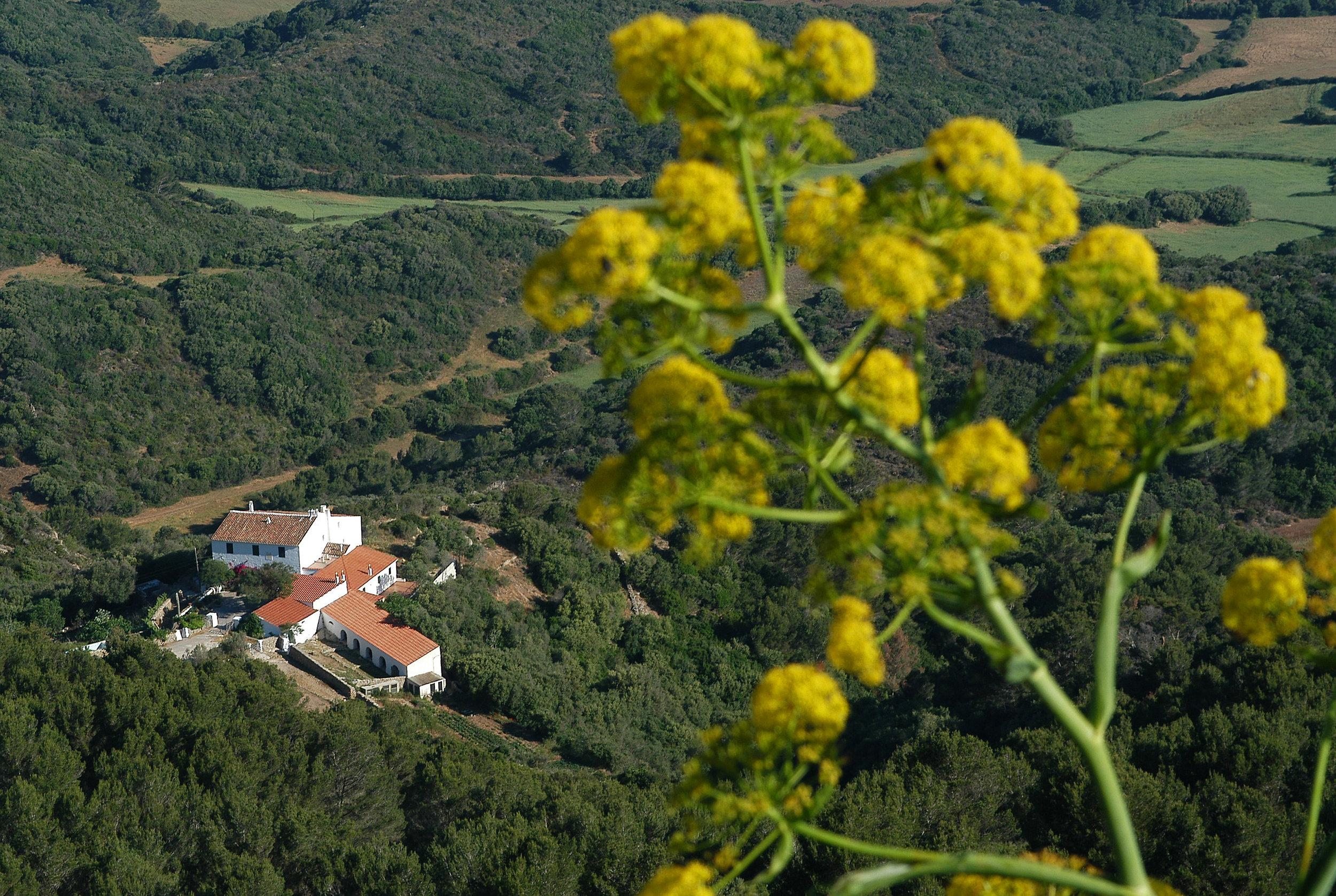 Monte Toro, Menorca, Espanja
