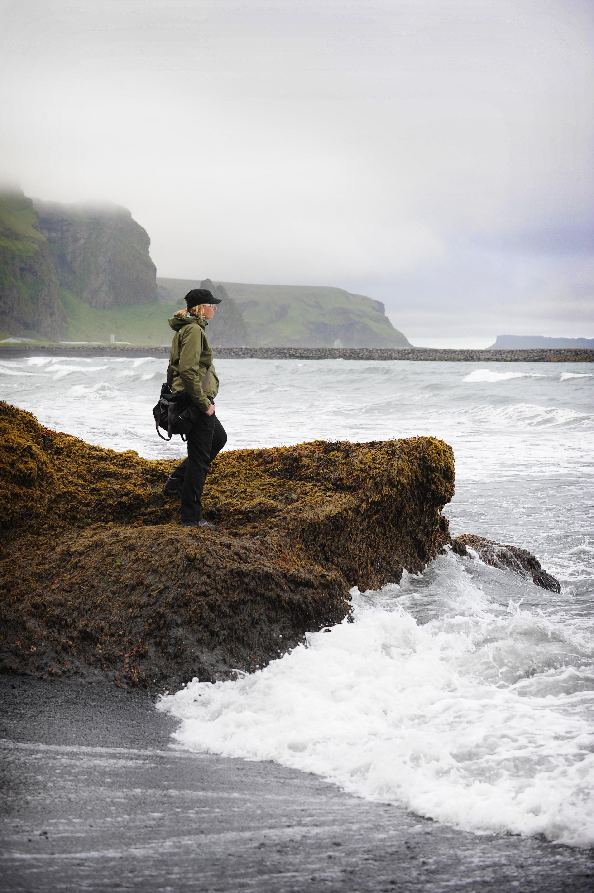 Vik, ranta, Islanti, matkablogi