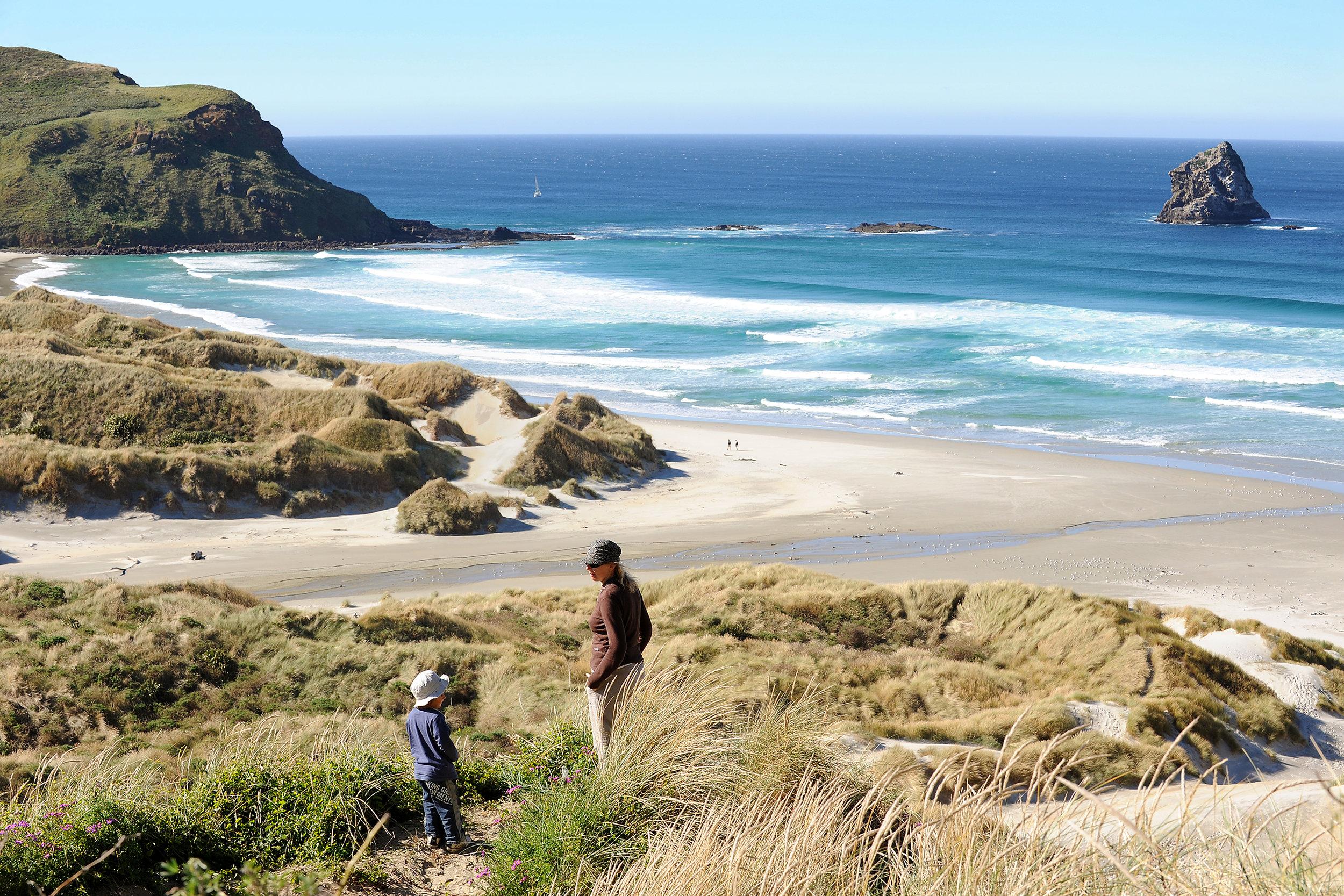 Uusi-Seelanti, Eteläsaari, Otago-niemimaa, Sandfly Bay