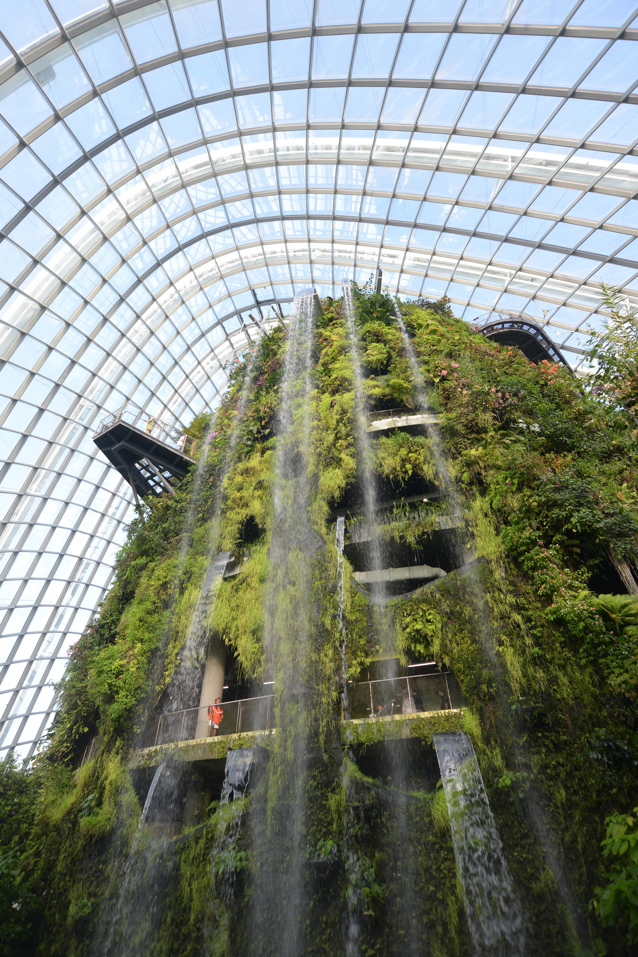 Cloud Forest, Singapore, nähtävyys