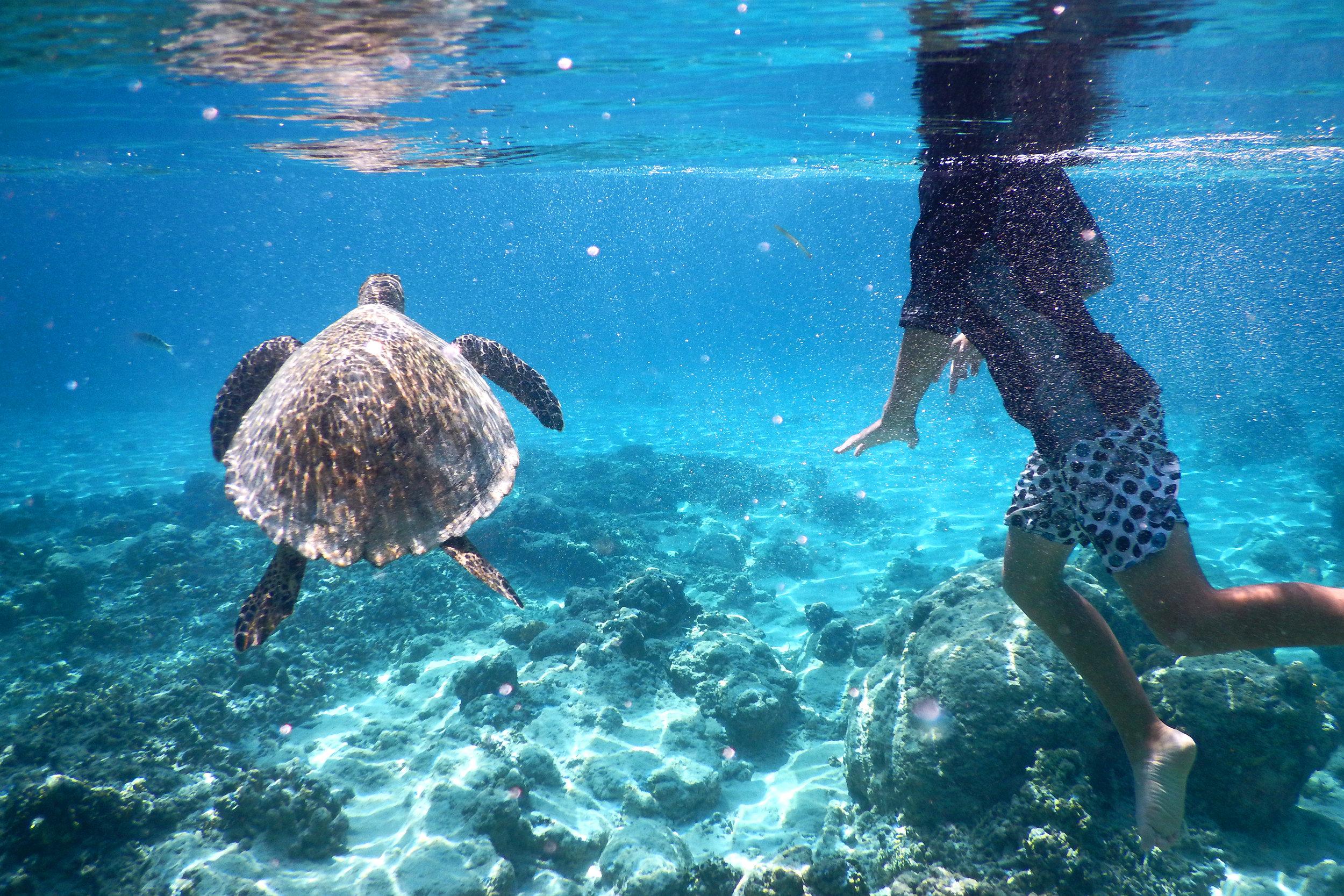 Gili T, Trawagan, snorklailu, Indonesia