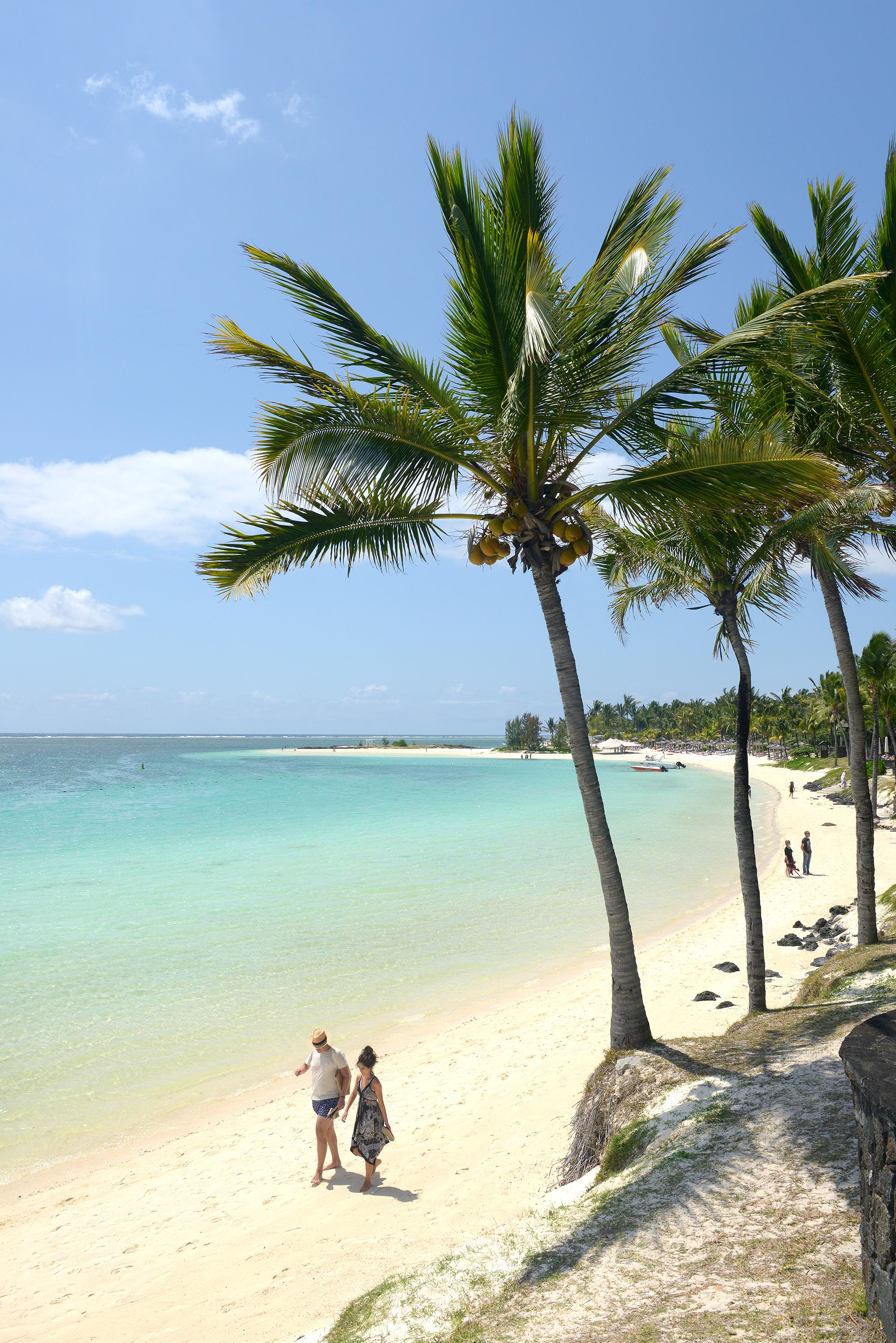 Mauritius, ranta, palmu
