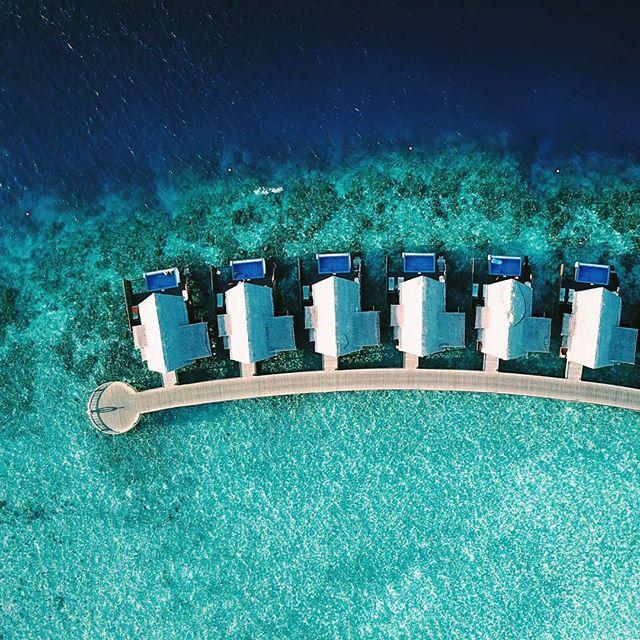 Viikko turkoosin meren ympäröimänä. Vain fisuja joka puolella. 🐠🦀🐚🦀🐠 #matkallaolenonnellinen #meri #loma #maldives