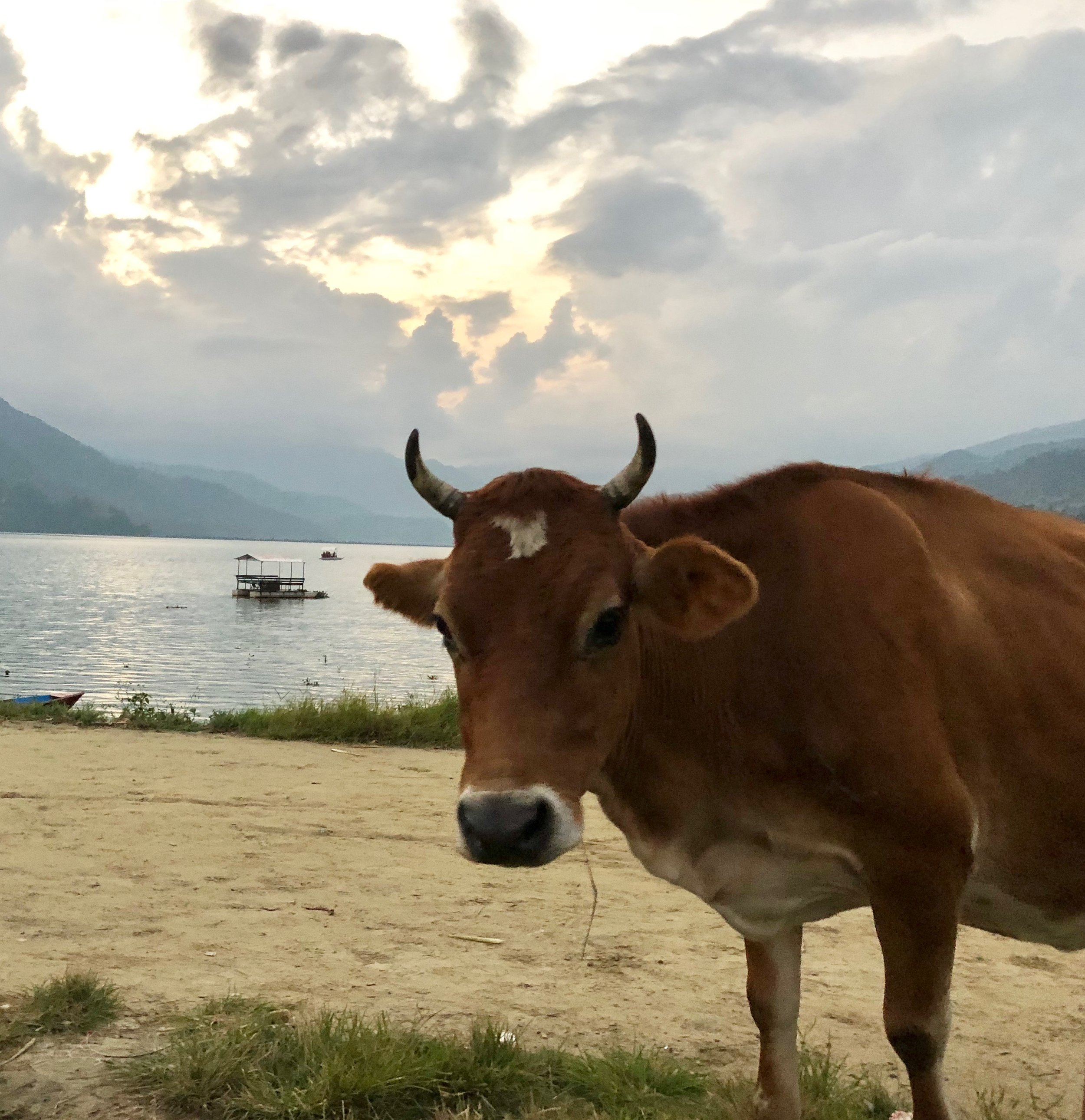 Lake view in Pokhara and some friendly locals. A nice place to enjoy a beer and a sunset.