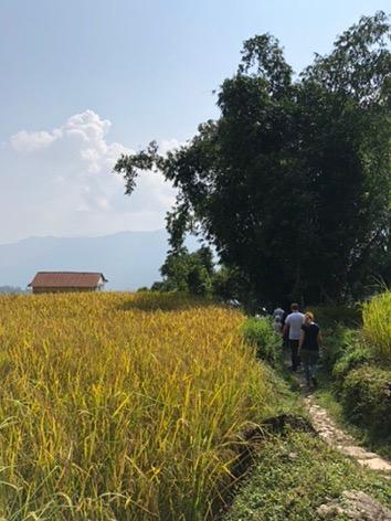 path kaskikot nepal pokhara trekking annapurna sarangot.jpg