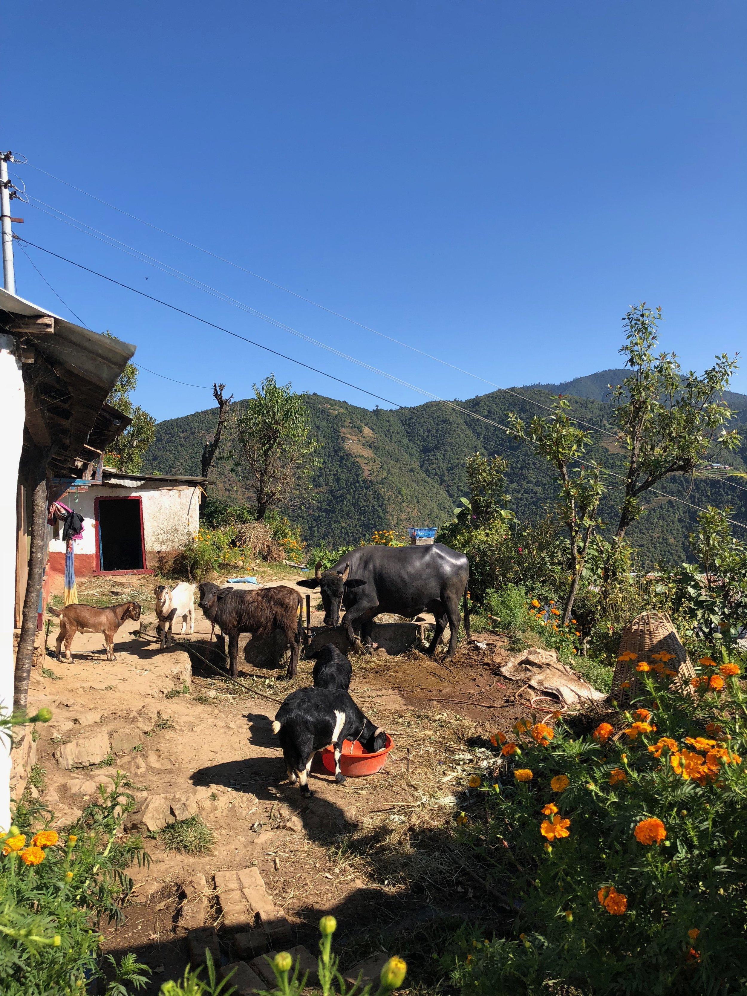 Nepal_farmers_village.jpg