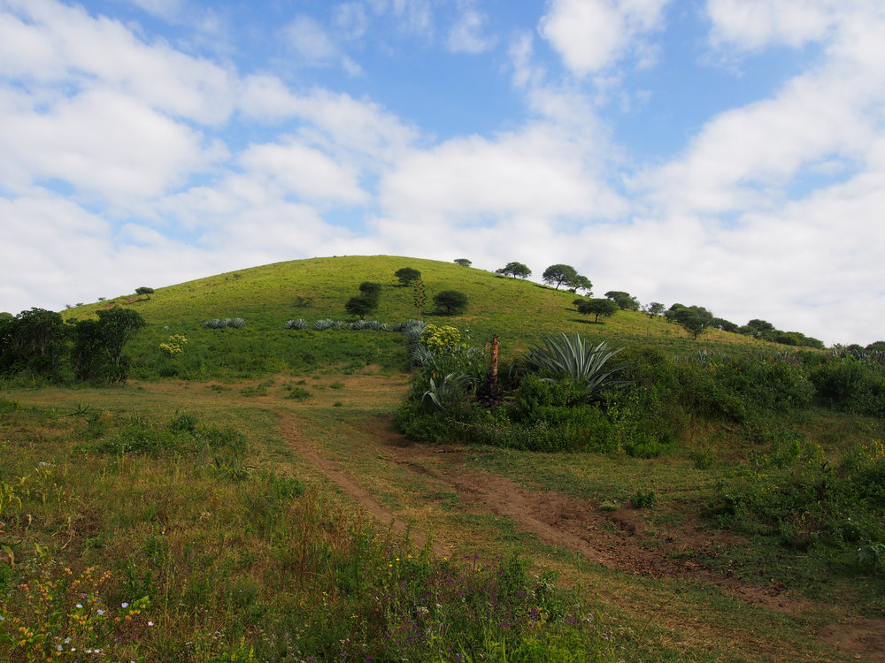 tanzania_village.jpg