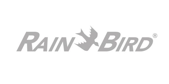 NY15_rainbird.jpg