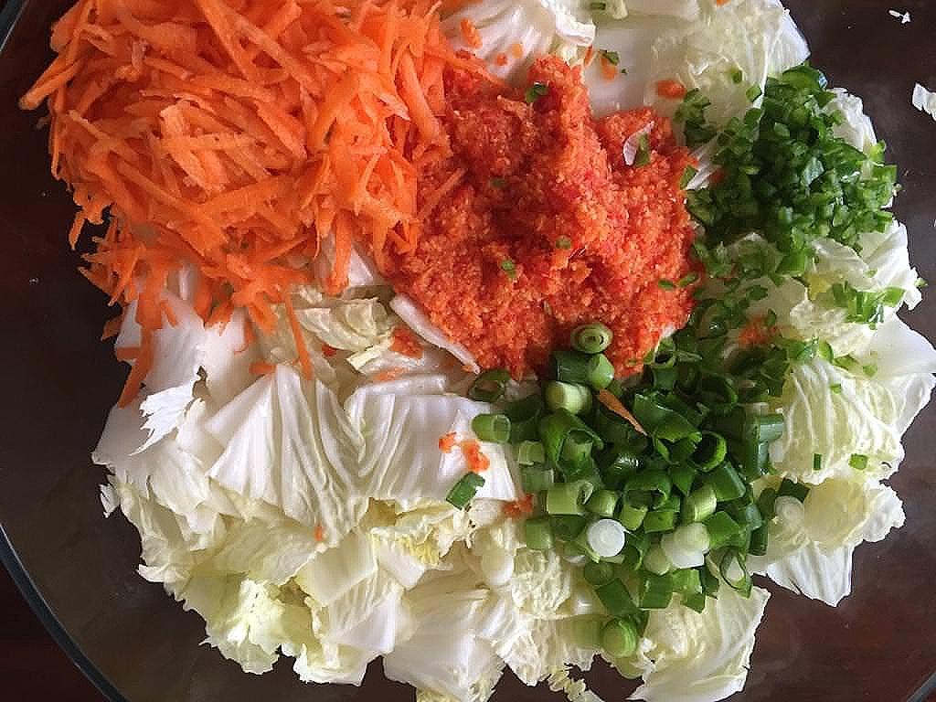 Kimchi_Zutaten.jpeg