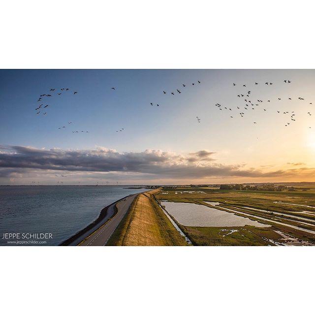 August 2019 - Plompe Toren, Zierikzee, Zeeland, the Netherlands. . . . . #sunset #zonsondergang #sun #PlompeToren #Koudekerke #Oosterschelde #Zeeland #Netherlands #Holland #zee #sea #natuur #nature #natuurfotografie #vogels #birds #nederlandseluchten #landscape #landschap #landschapsfotografie #landscapephotography #travelgram #traveltheworld #travelphoto #wanderlust #natuurmonumenten #staatsbosbeheer #monument #cameranu