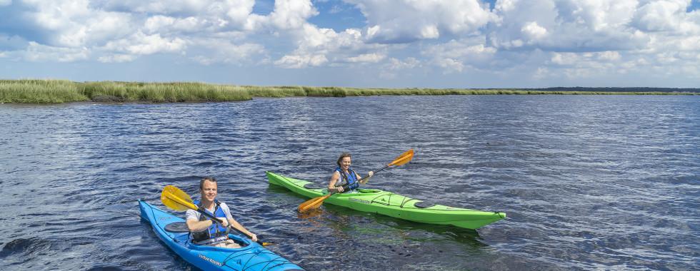 Kayaks-Web-980x380.jpg