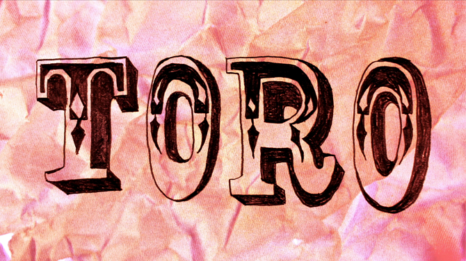 toro5.png