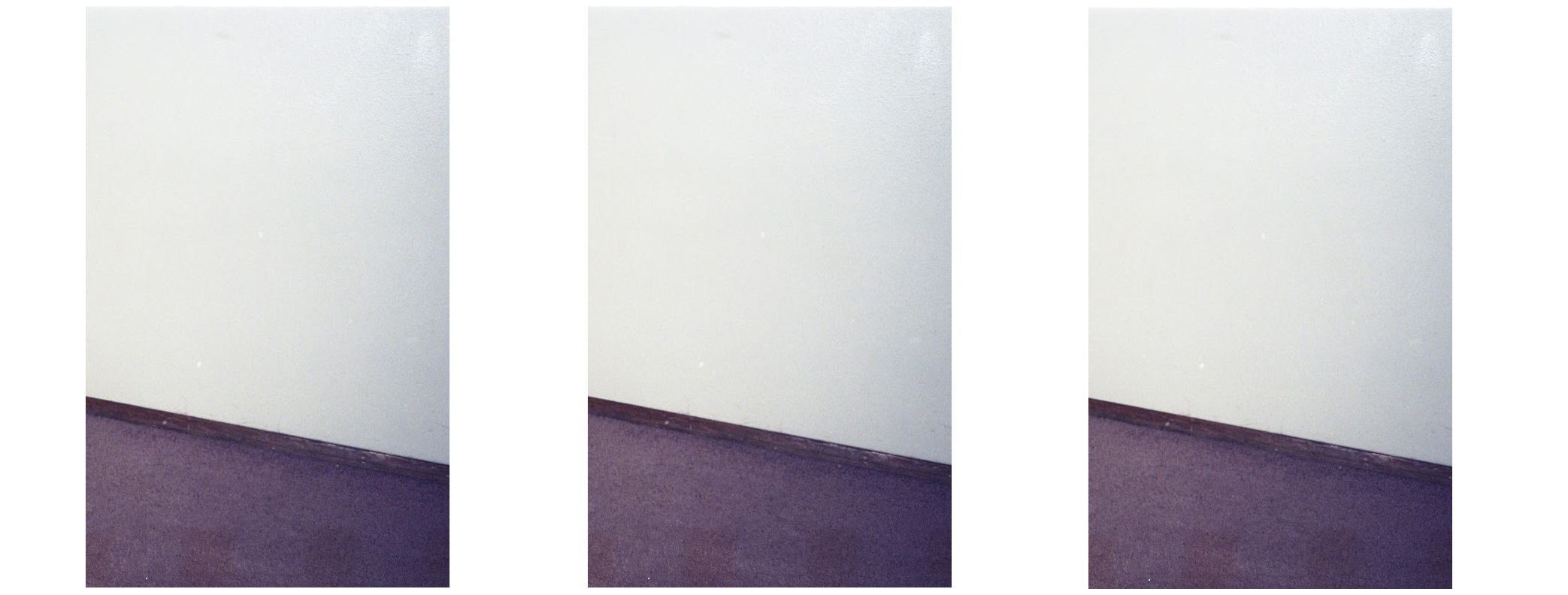 The Carpet (tripych)