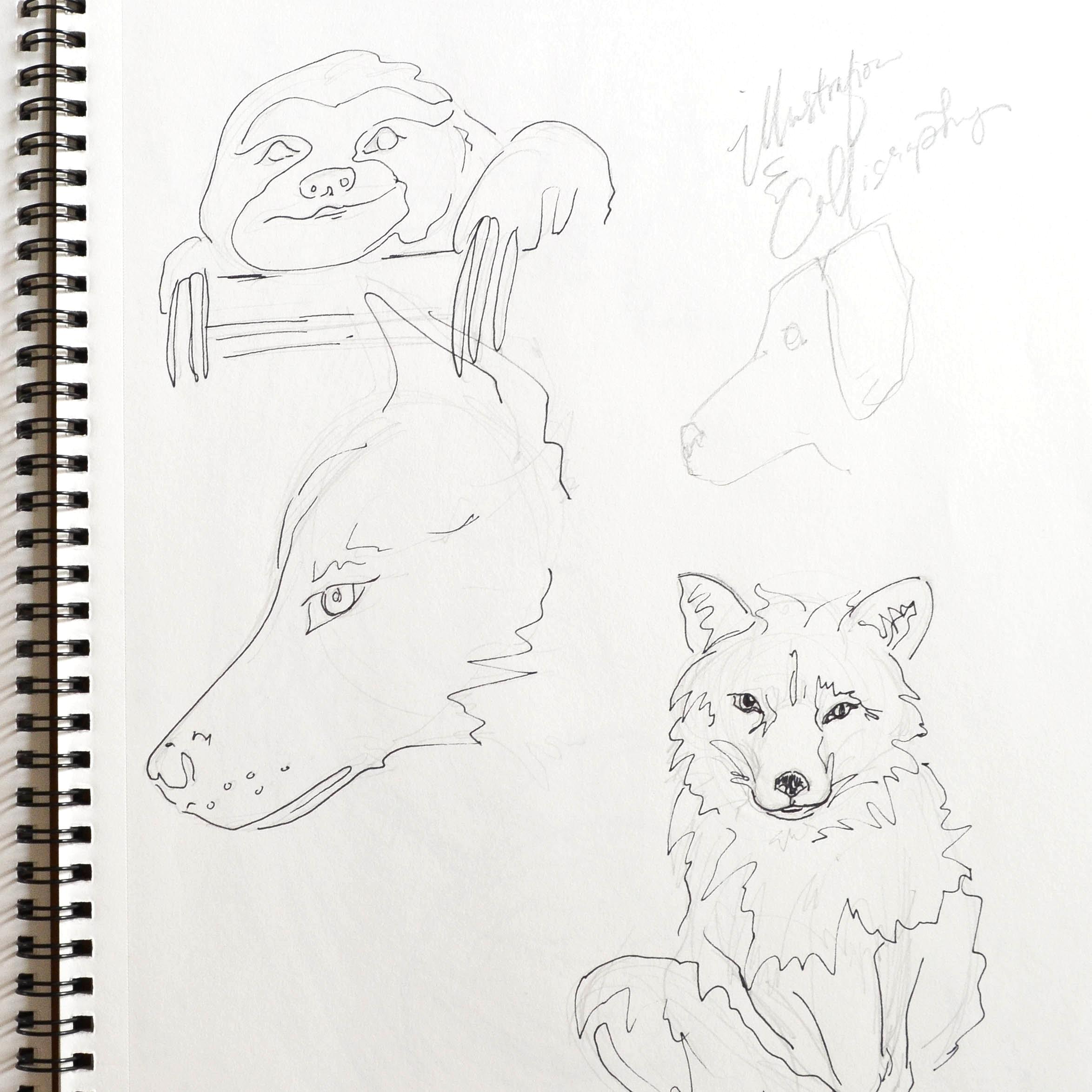 5 | Quick animal sketches.